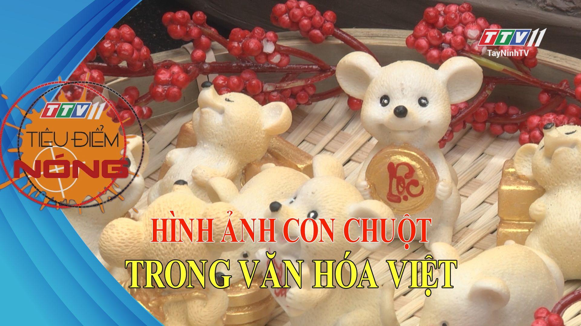 Hình ảnh con chuột trong văn hóa Việt | TIÊU ĐIỂM NÓNG | TayNinhTV