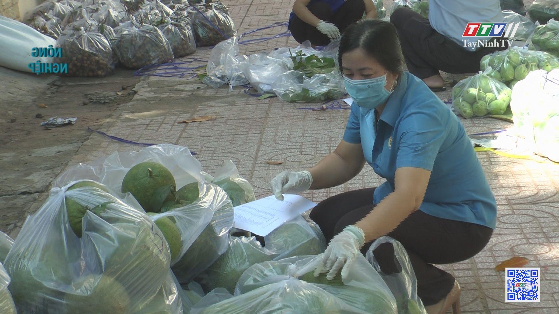 Ngành nông nghiệp tiếp tục hỗ trợ tiêu thụ nông sản   NÔNG NGHIỆP TÂY NINH   TayNinhTV