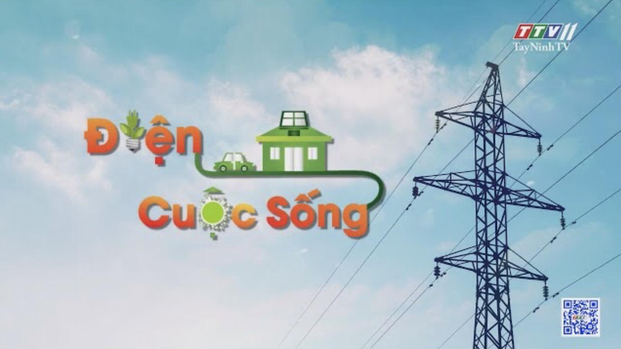 CÔNG TÁC KIỂM TRA, BẢO DƯỠNG, ĐẦU TƯ XÂY DỰNG LƯỚI ĐIỆN 110KV | TayNinhTV