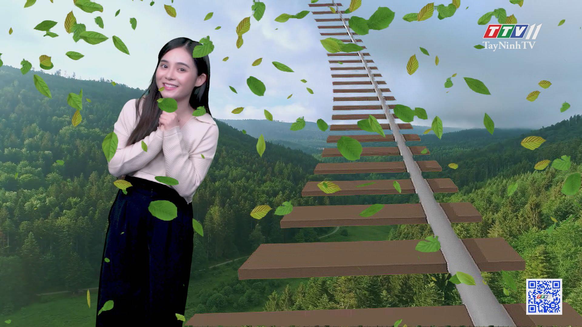 Đường trượt nước dài nhất thế giới xuyên qua rừng rậm | CHUYỆN ĐÔNG TÂY KỲ THÚ | TayNinhTV