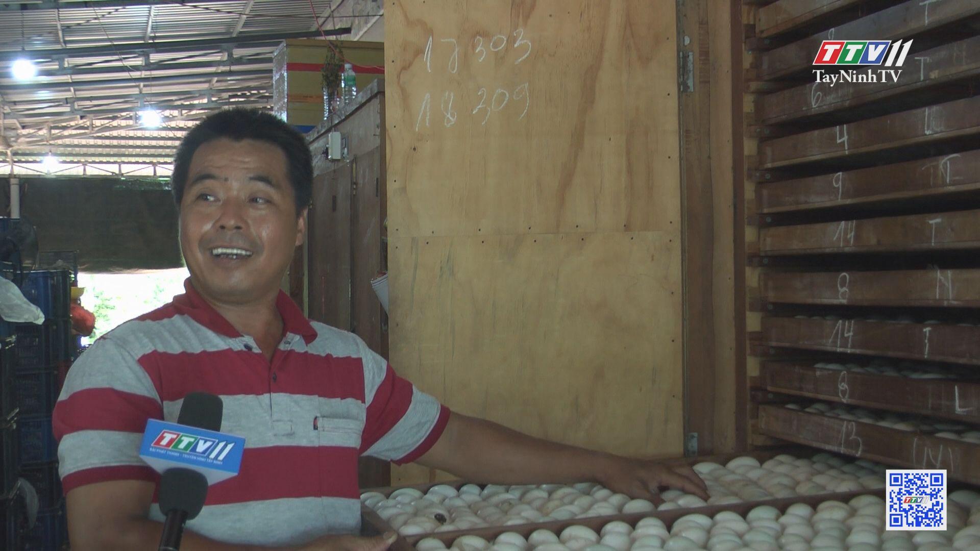 Những mô hình chăn nuôi hiệu quả | NÔNG NGHIỆP TÂY NINH | TayNinhTV