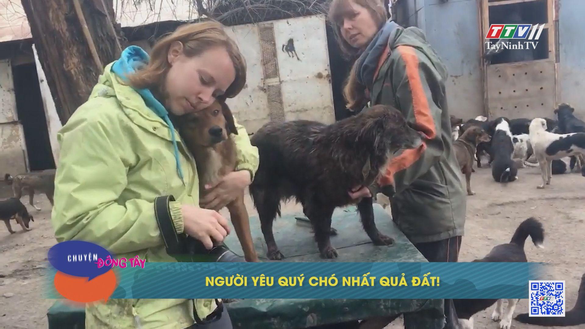 Người yêu chó nhất quả đất | CHUYỆN ĐÔNG TÂY KỲ THÚ | TayNinhTVE