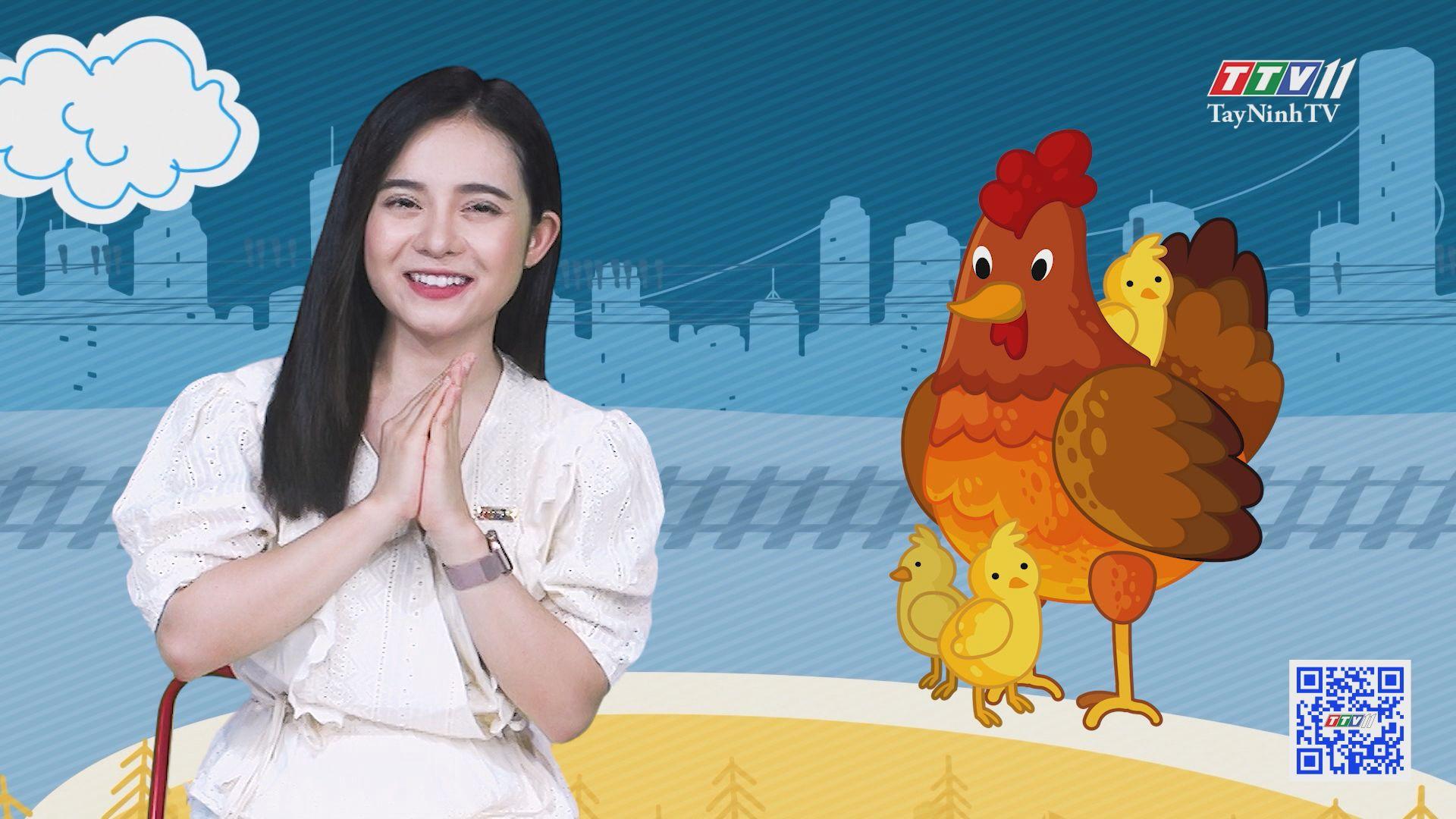 Chuyện Đông Tây Kỳ Thú 02-8-2020 | TayNinhTV