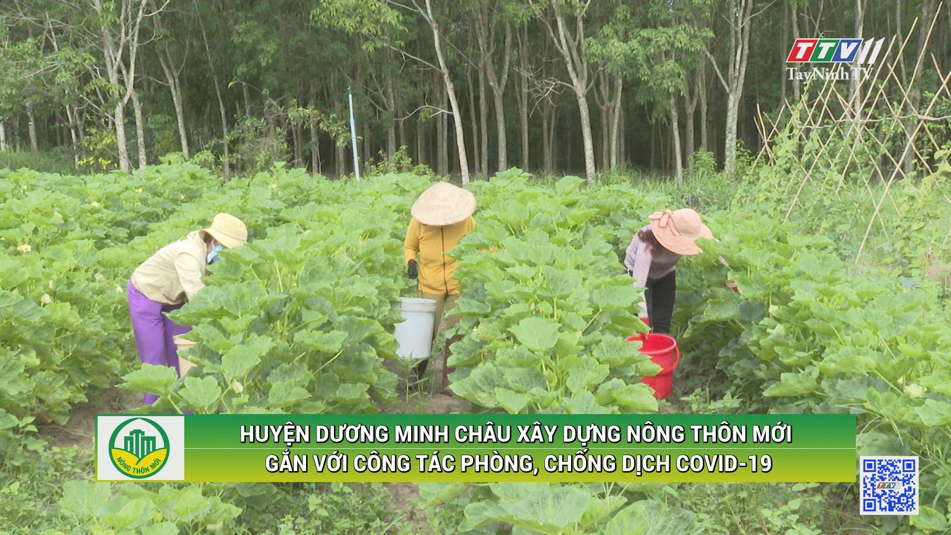 Huyện Dương Minh Châu xây dựng nông thôn mới gắn liền với công tác phòng, chống dịch Covid-19 | TÂY NINH XÂY DỰNG NÔNG THÔN MỚI | TayNinhTV