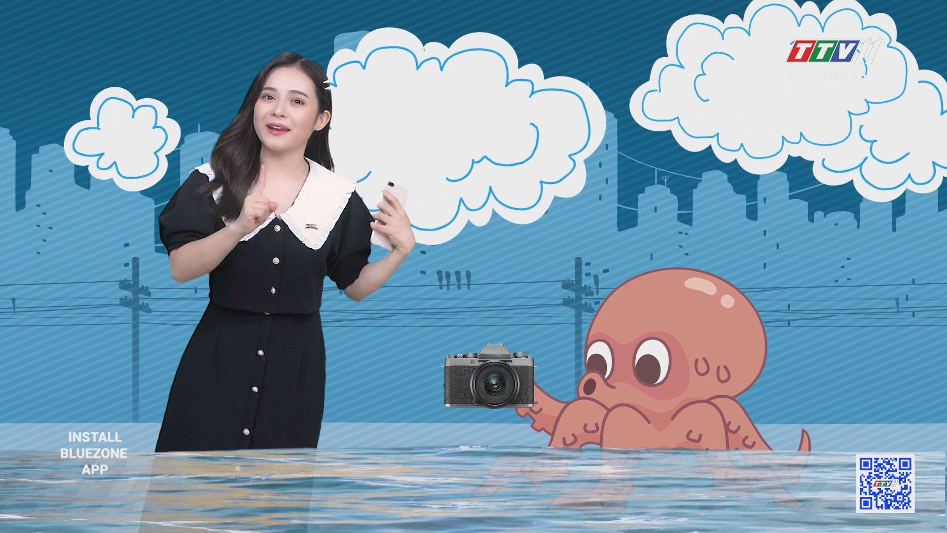 Con bạch tuộc đầu tiên trên thế giới có thể chụp hình | CHUYỆN ĐÔNG TÂY KỲ THÚ | TayNinhTV