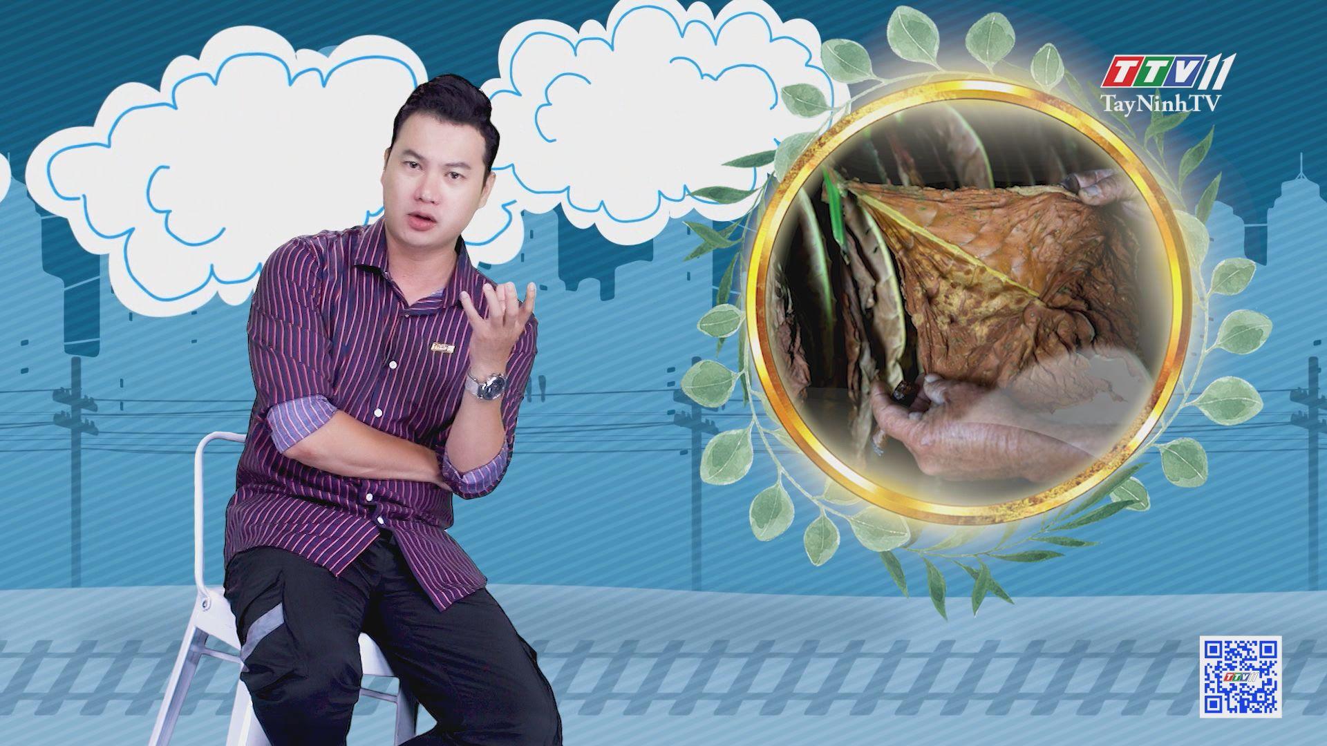 Sáng tác nghệ thuật bằng lá thuốc xì-gà   CHUYỆN ĐÔNG TÂY KỲ THÚ   TayNinhTV