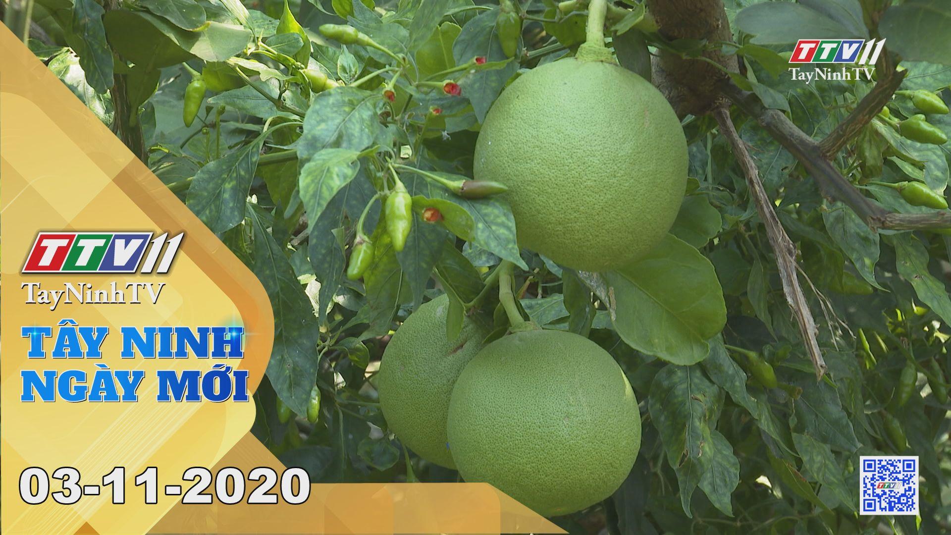 Tây Ninh Ngày Mới 03-11-2020 | Tin tức hôm nay | TayNinhTV