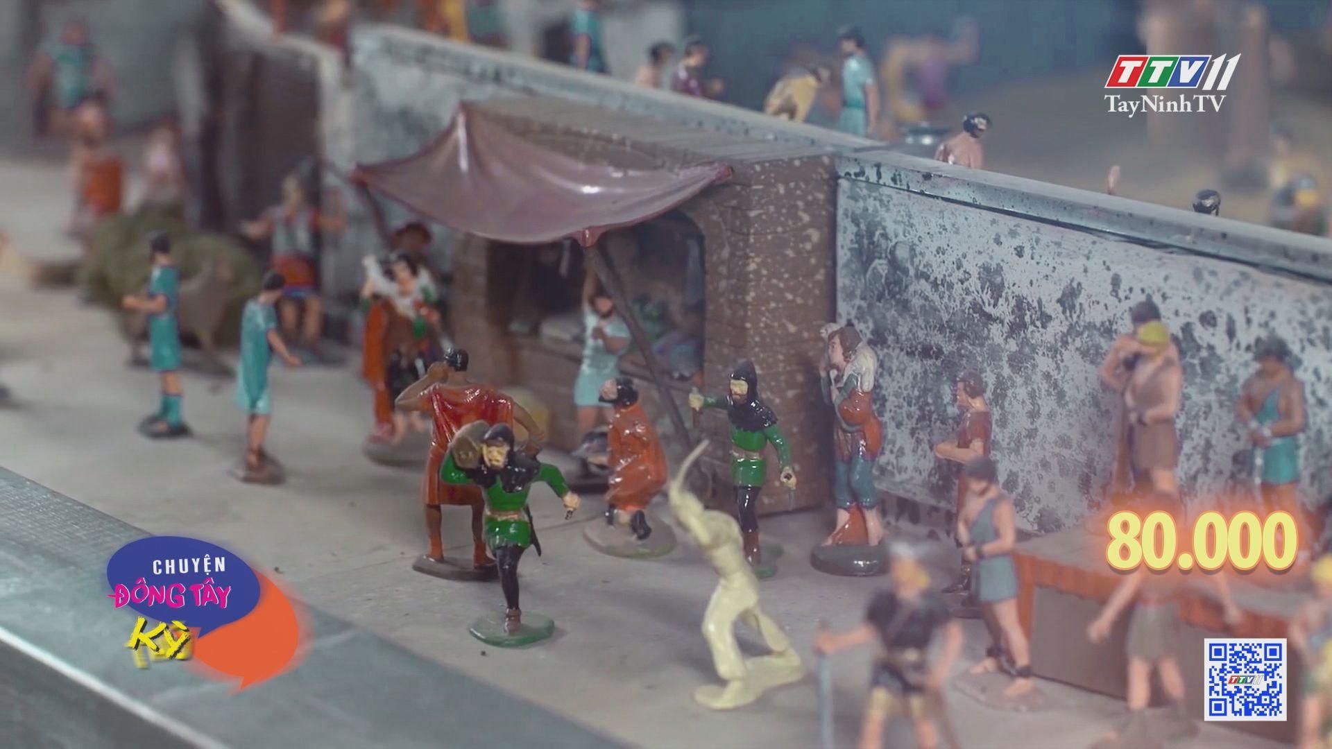 Bộ sưu tập đồ chơi trị giá 1,5 triệu đô la Mỹ | CHUYỆN ĐÔNG TÂY KỲ THÚ | TayNinhTV
