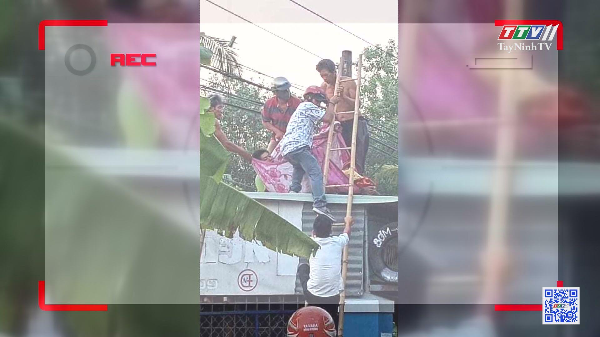 Đảm bảo hành lang an toàn lưới điện | ĐIỆN VÀ CUỘC SỐNG | TayNinhTV