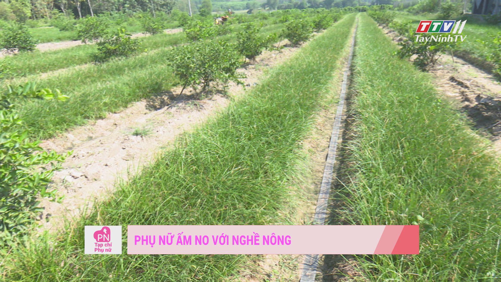 Phụ nữ ấp no với nghề nông | TẠP CHÍ PHỤ NỮ | TayNinh TV