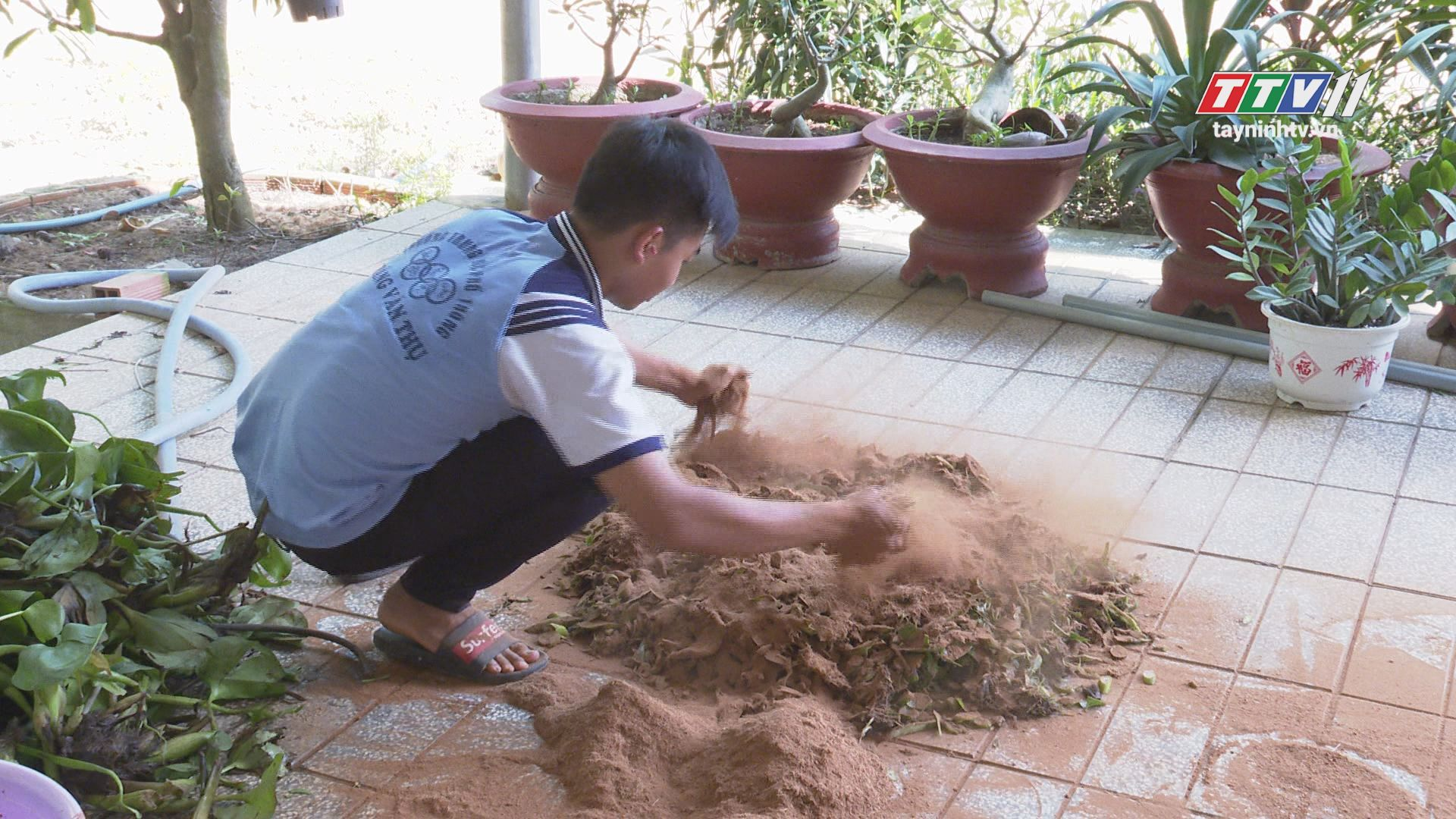 Biến lục bình thành phân hữu cơ | GƯƠNG MẶT TRẺ | TayNinhTV