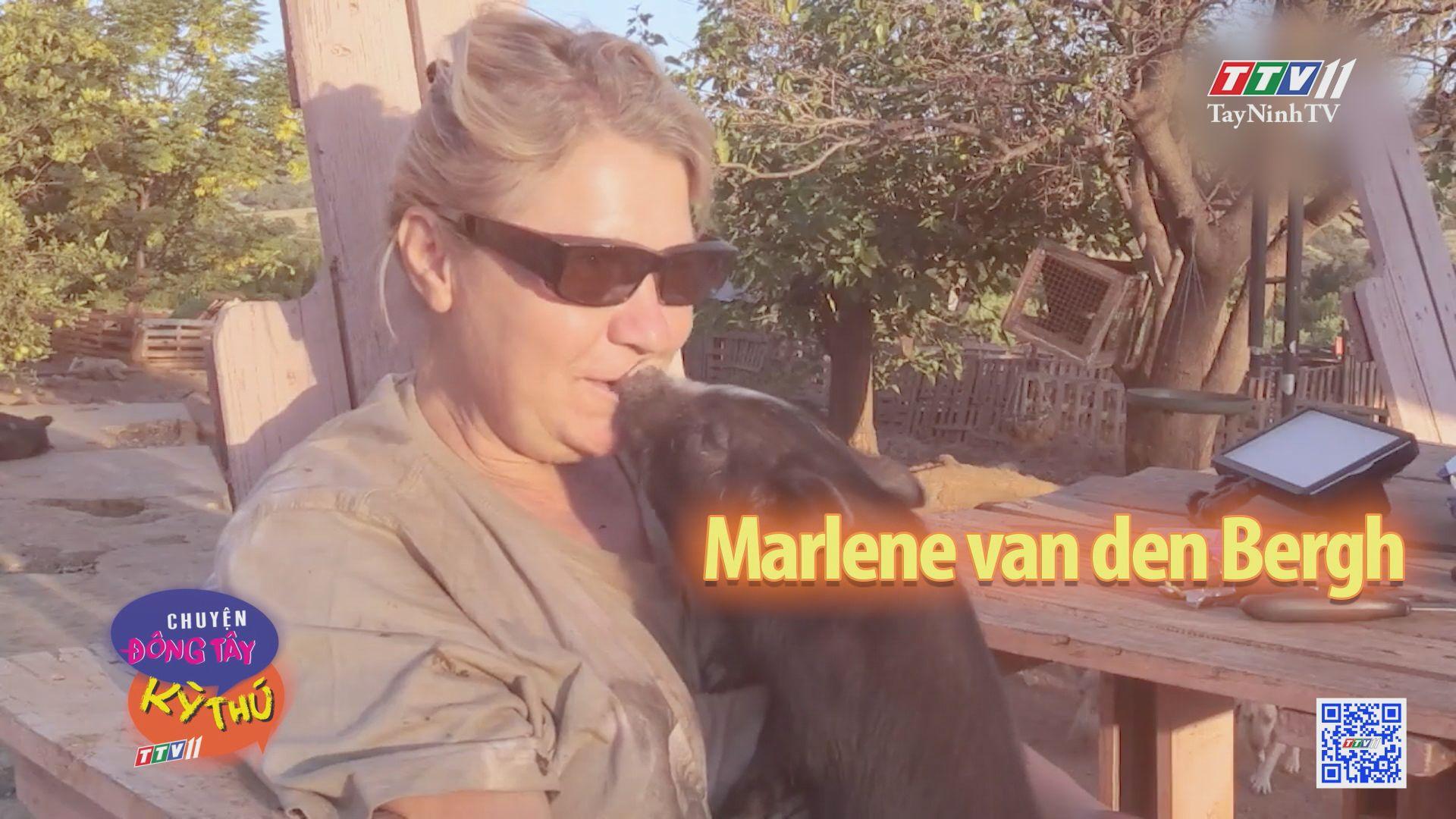 Trung tâm cứu hộ những con heo cưng bị bỏ rơi | CHUYỆN ĐÔNG TÂY KỲ THÚ | TayNinhTV