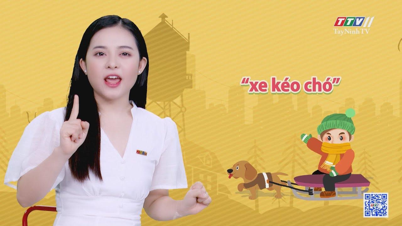 Độc đáo cuộc thi thổi vỏ ốc xà cừ | CHUYỆN ĐÔNG TÂY KỲ THÚ | TayNinhTVE