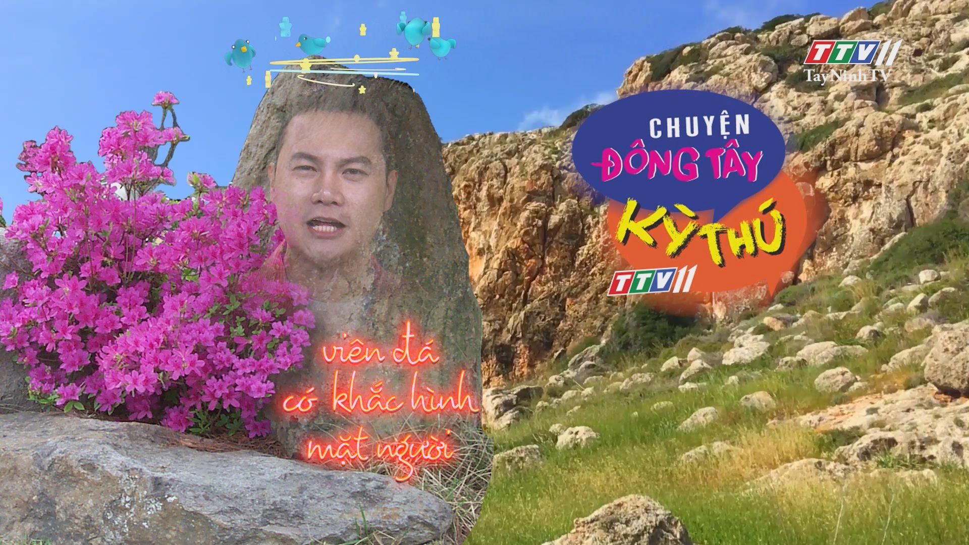 Chuyện Đông Tây Kỳ Thú 07-5-2020 | TayNinhTV