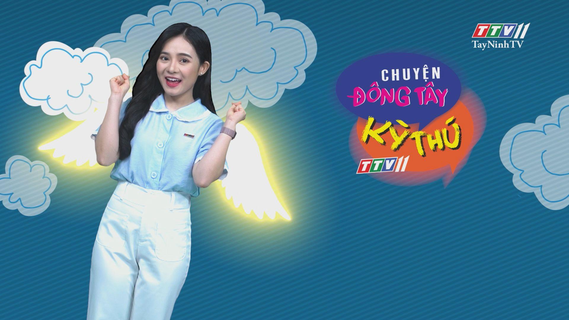 Chuyện Đông Tây Kỳ Thú 07-7-2020 | TayNinhTV