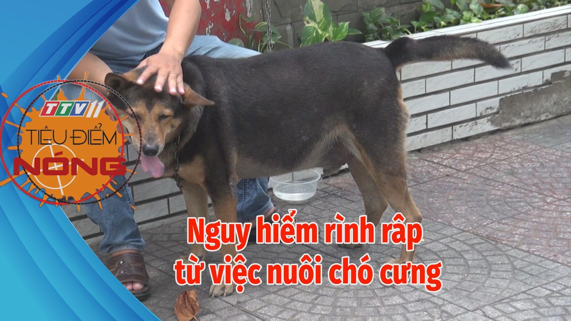Nguy hiểm rình rập từ việc nuôi chó cưng | TIÊU ĐIỂM NÓNG | Tây Ninh TV
