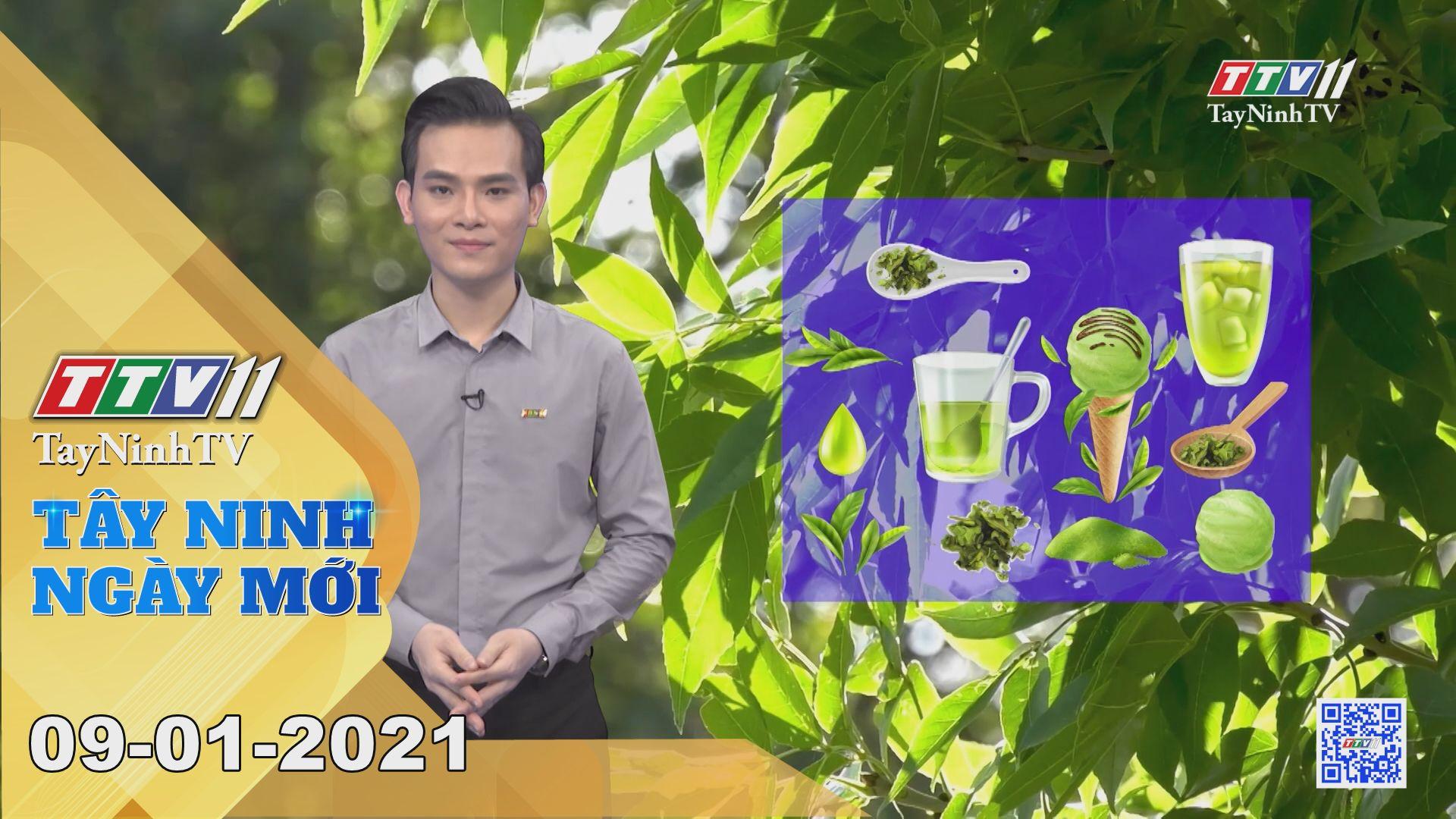 Tây Ninh Ngày Mới 09-01-2021 | Tin tức hôm nay | TayNinhTV