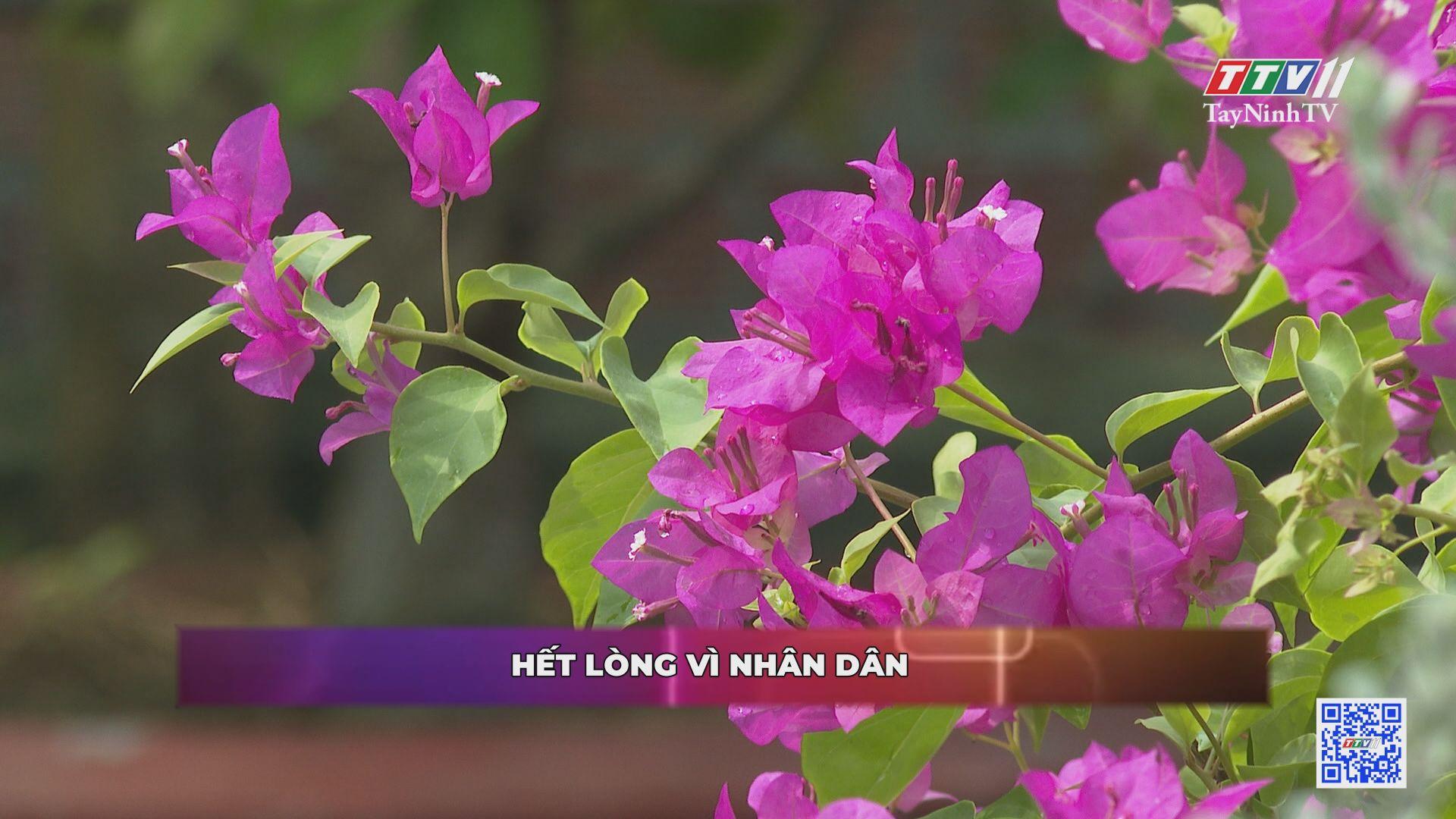 Hết lòng vì dân | ĐẠI ĐOÀN KẾT TOÀN DÂN | TayNinhTV