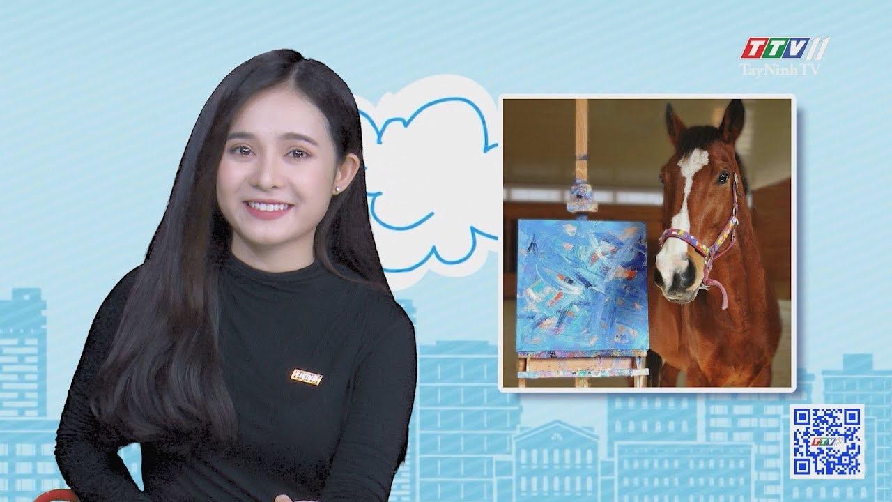 Chuyện Đông Tây Kỳ Thú 09-8-2020 | TayNinhTV