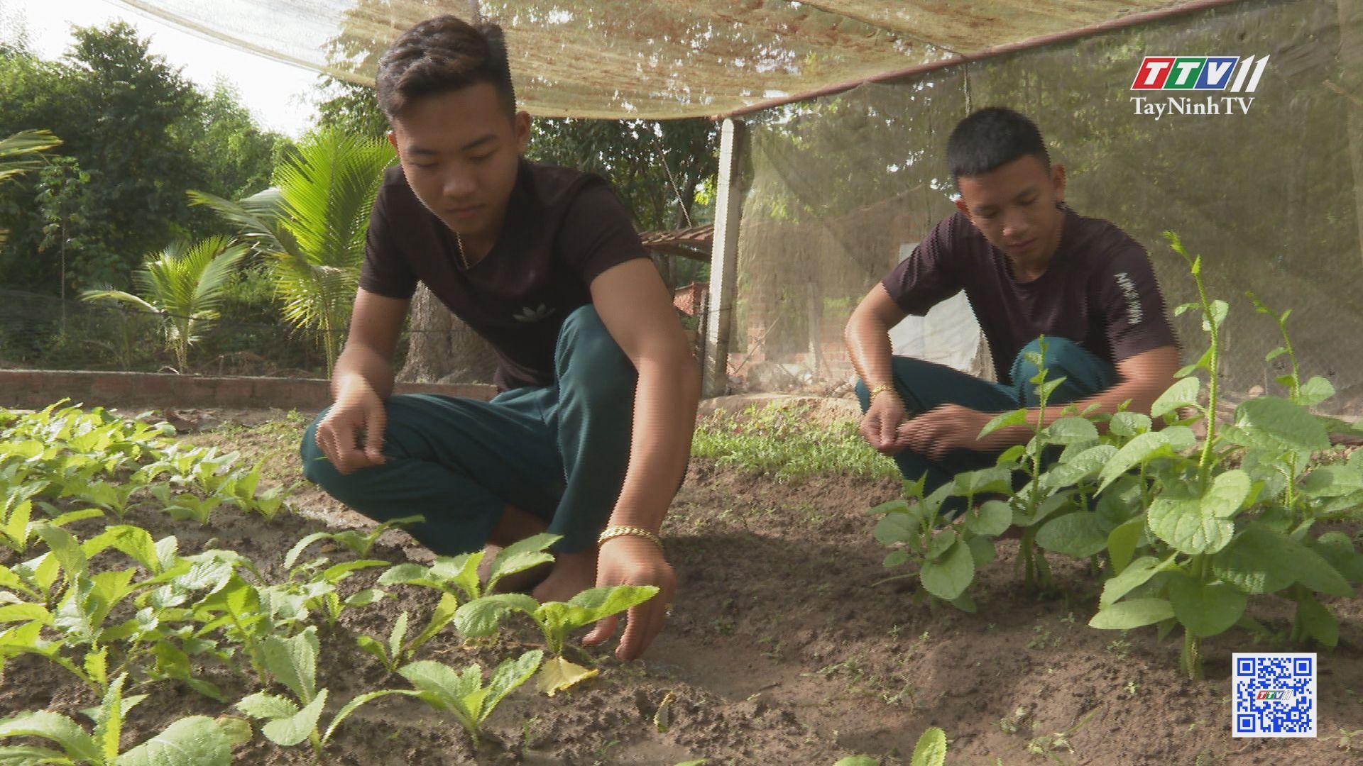 Công tác chăm lo chế độ, chính sách cho lực lượng Dân quân nơi biên giới | PHÁP LUẬT VỀ DÂN QUÂN TỰ VỆ | TayNinhTV
