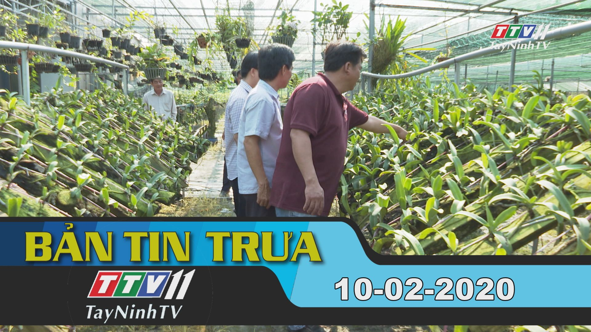 Bản tin trưa 10-02-2020 | Tin tức hôm nay | TayNinhTV