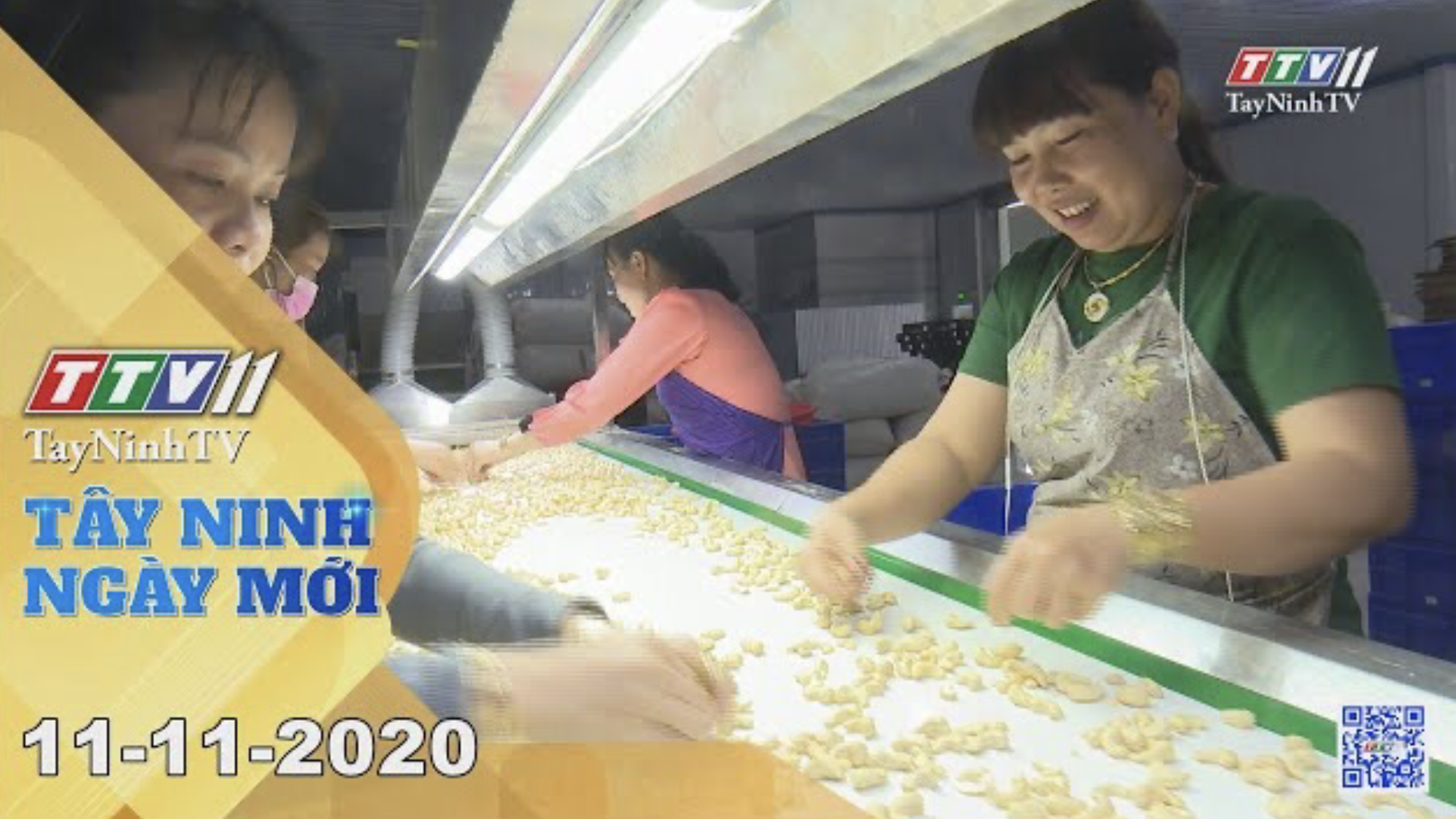 Tây Ninh Ngày Mới 11-11-2020 | Tin tức hôm nay | TayNinhTV