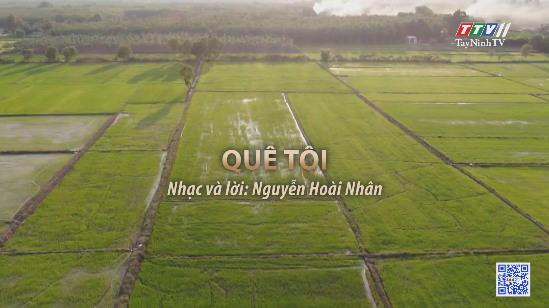Quê tôi | Tuyển tập karaoke Tây Ninh tình yêu trong tôi | TayNinhTV