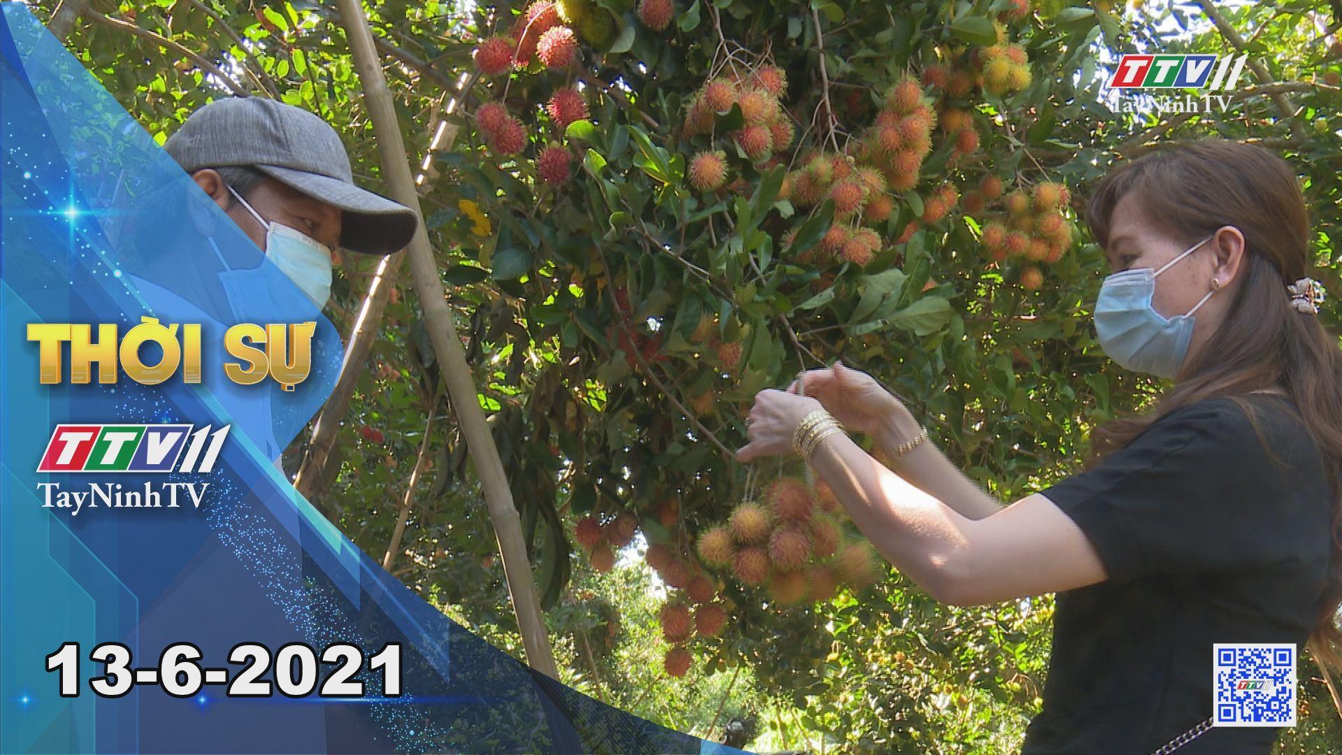 Thời sự Tây Ninh 13-6-2021 | Tin tức hôm nay | TayNinhTV