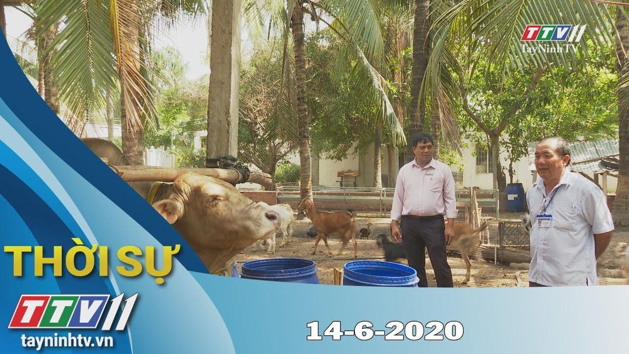 Thời sự Tây Ninh 14-6-2020 | Tin tức hôm nay | TayNinhTV