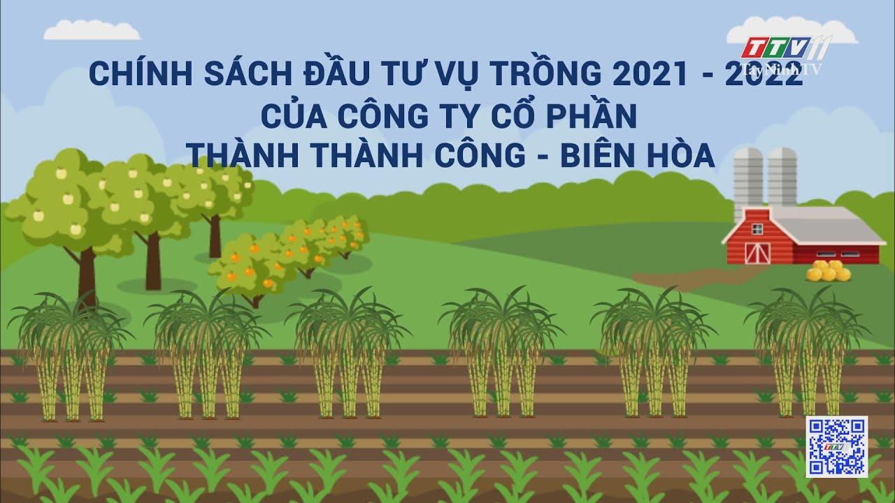 CHÍNH SÁCH ĐẦU TƯ VỤ TRỒNG 2021 - 2022 CỦA CÔNG TY CỔ PHẦN THÀNH THÀNH CÔNG - BIÊN HÒA | TayNinhTV