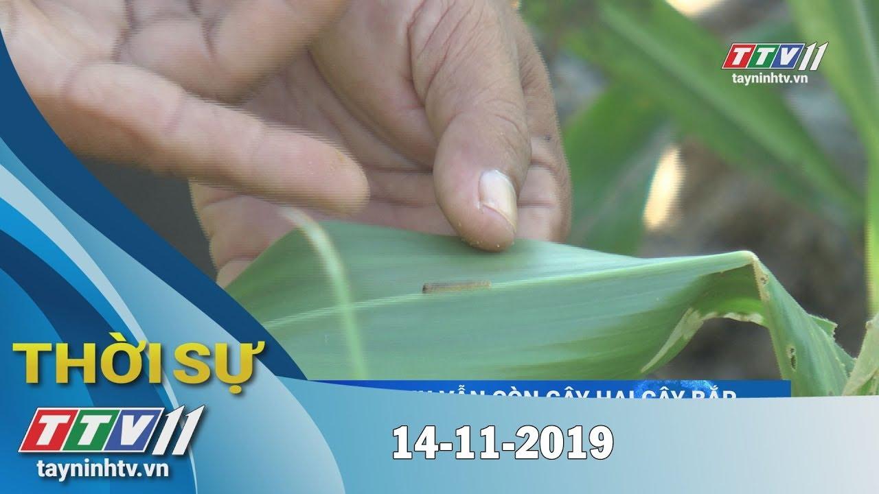 Thời Sự Tây Ninh 14-11-2019 | Tin tức hôm nay | Tây Ninh TV
