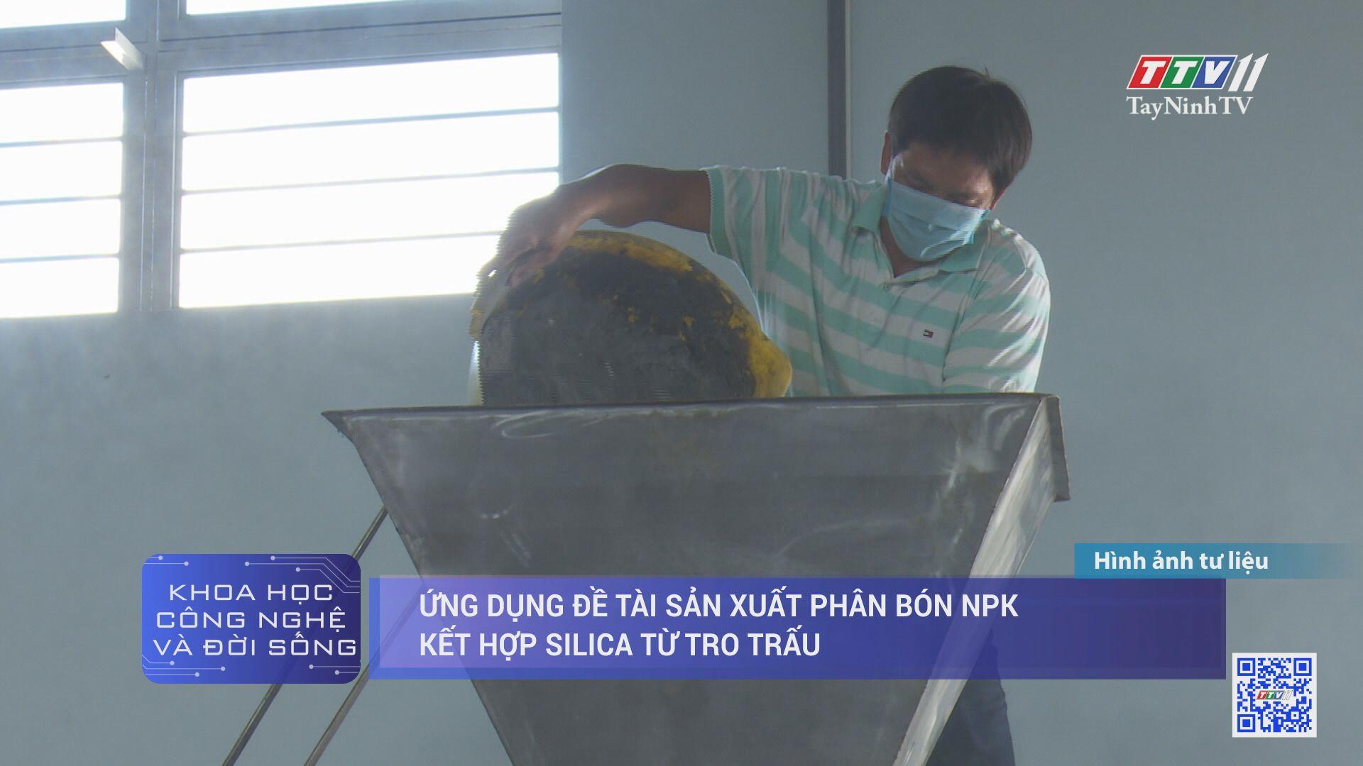 Ứng dụng đề tài sản xuất phân bón NPK kết hợp silica từ tro trấu | KHOA HỌC VÀ CÔNG NGHỆ | TayNinhTV