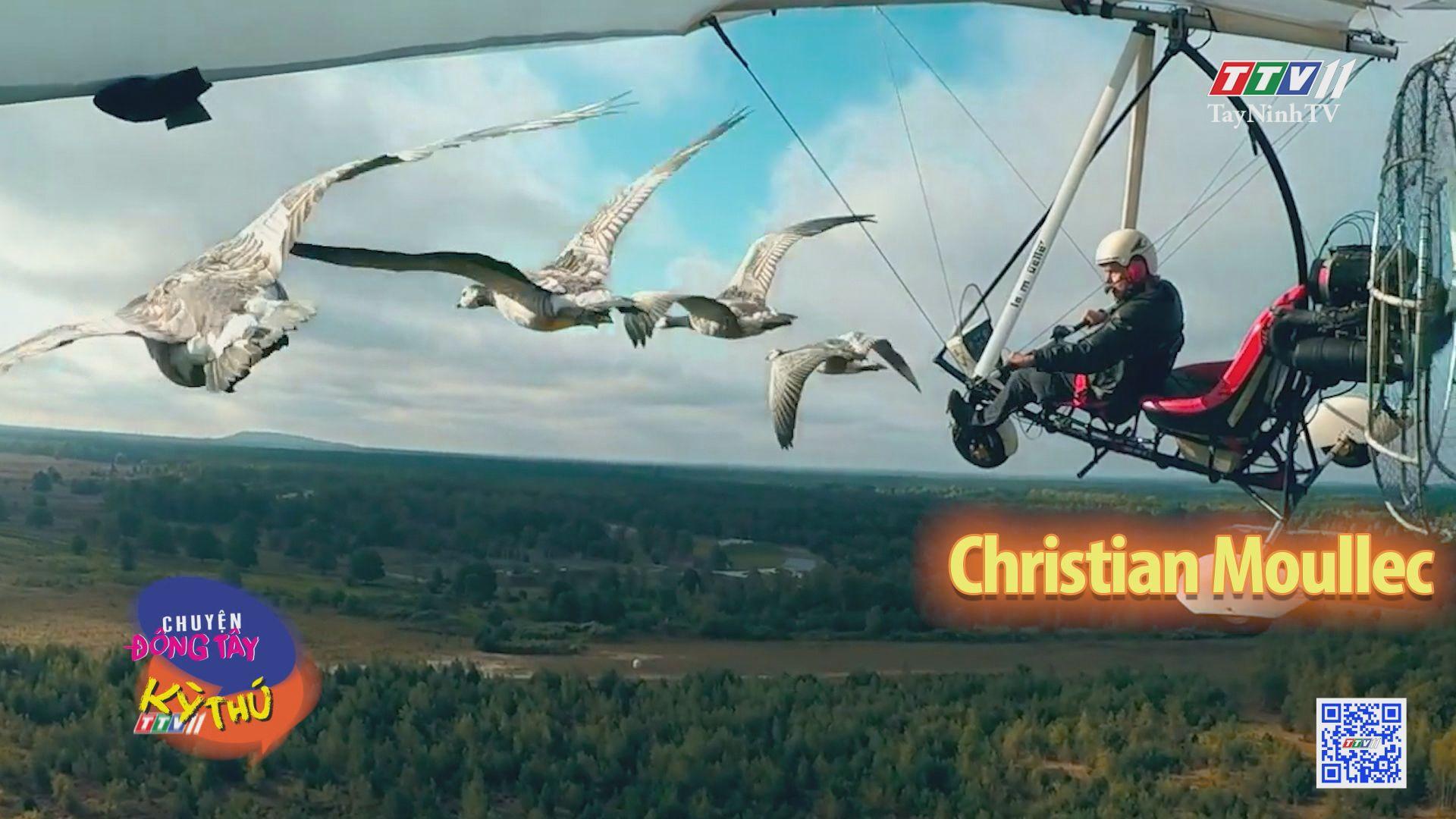 Người thích bay cùng các đàn chim | CHUYỆN ĐÔNG TÂY KỲ THÚ | TayNinhTV