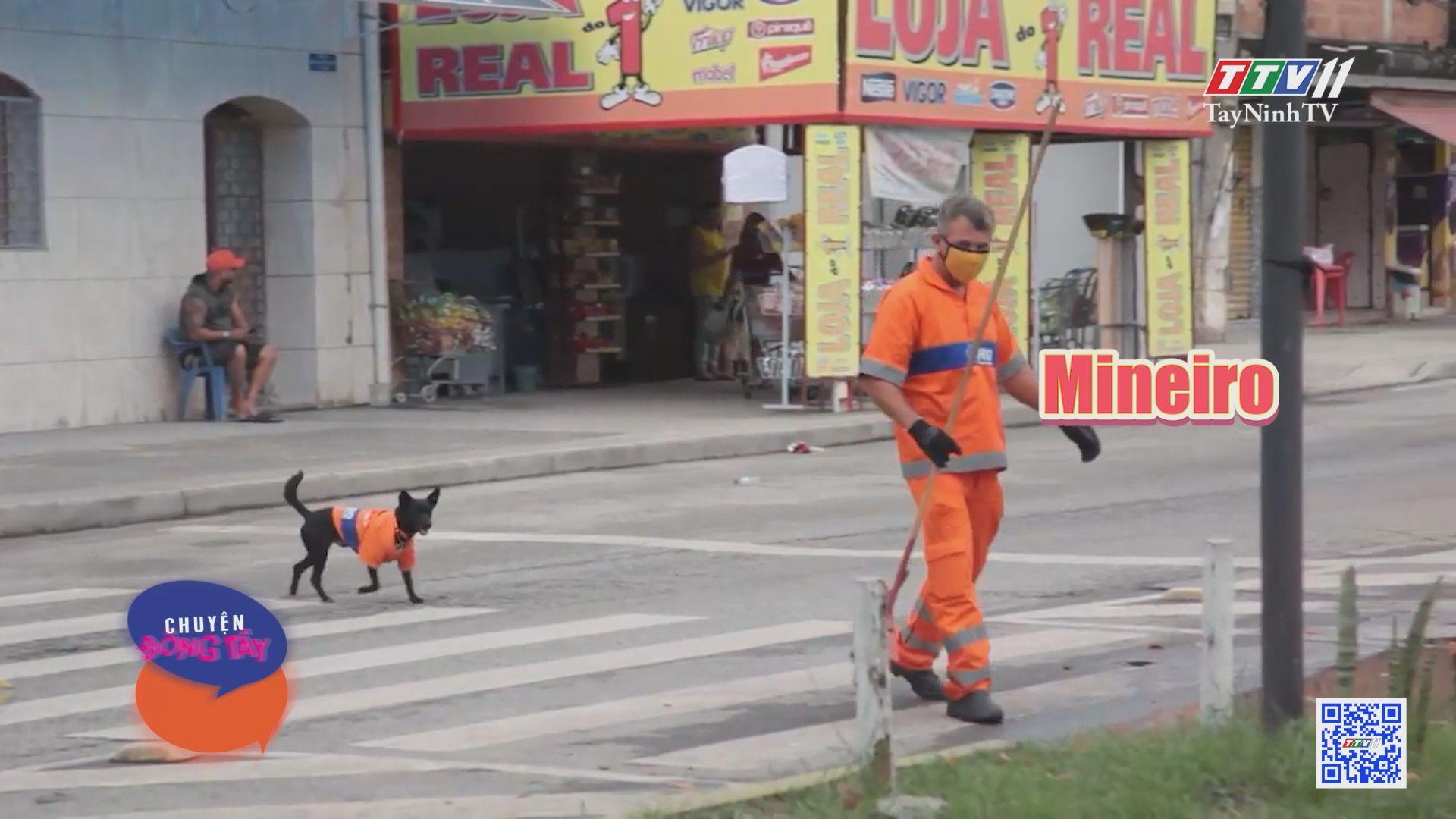 Người quét đường đồng hành cùng chó cưng | CHUYỆN ĐÔNG TÂY KỲ THÚ | TayNinhTVE