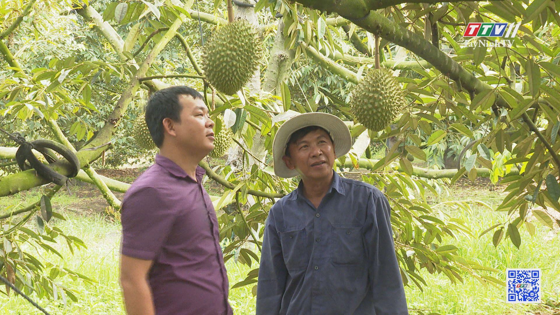 Chuyển đổi cây trồng thúc đẩy kinh tế nông thôn phát triển | TÂY NINH XÂY DỰNG NÔNG THÔN MỚI | TayNinhTV