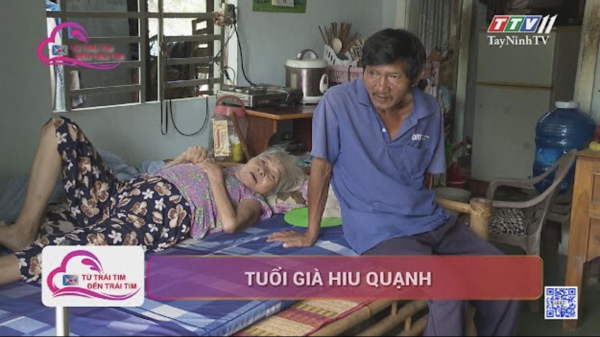 Tuổi già hiu quạnh | TỪ TRÁI TIM ĐẾN TRÁI TIM | TayNinhTV