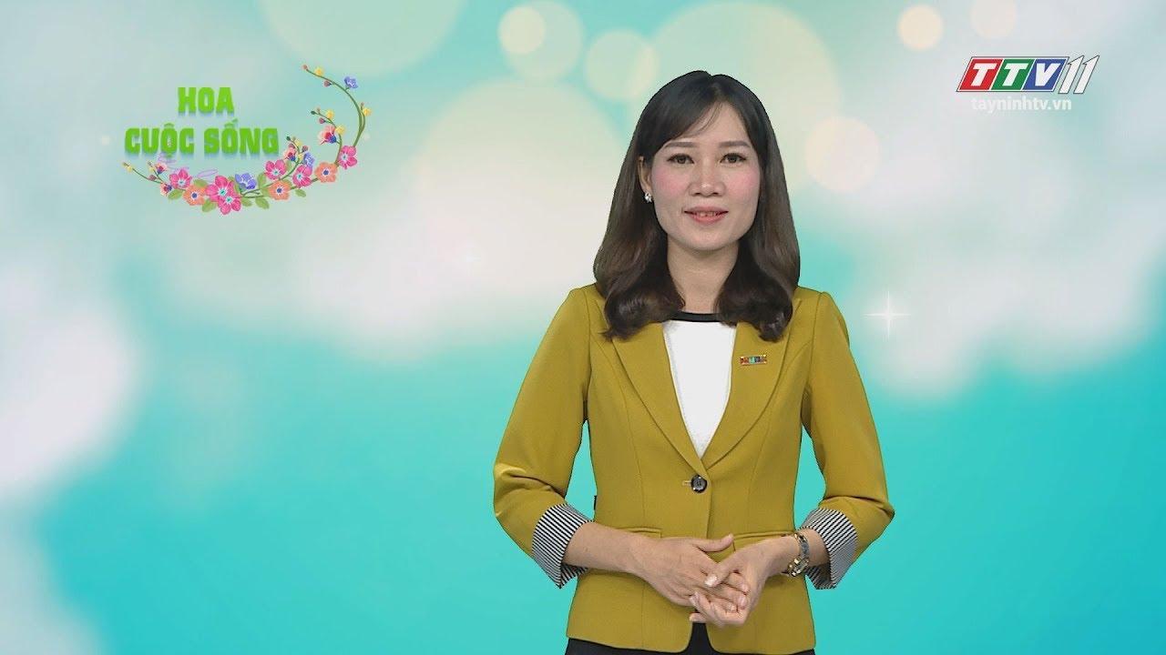Hết lòng vì cộng đồng Chăm | HOA CUỘC SỐNG | Tây Ninh TV