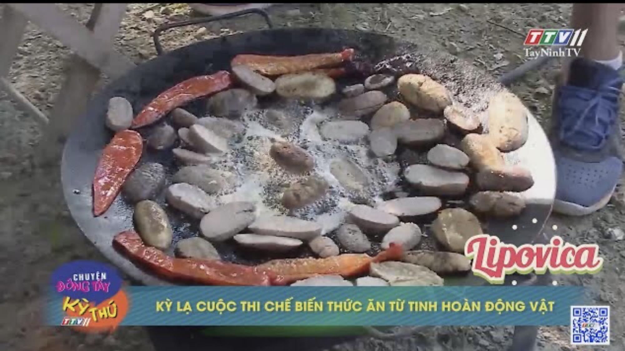 Kỳ lạ cuộc thi chế biến thức ăn từ tinh hoàn động vật | CHUYỆN ĐÔNG TÂY KỲ THÚ | TayNinhTVE