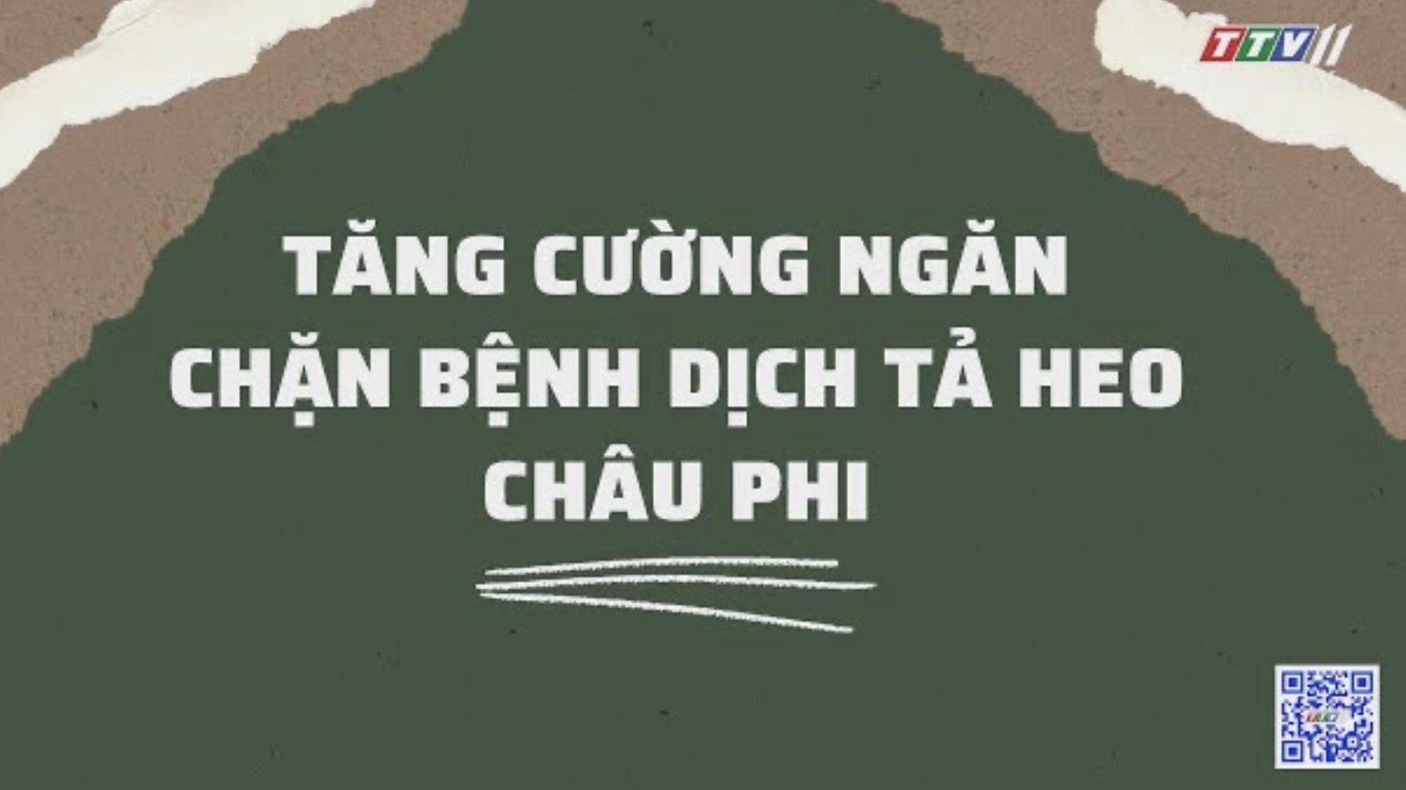 TĂNG CƯỜNG NGĂN CHẶN BỆNH DỊCH TẢ HEO CHÂU PHI | Nông nghiệp Tây Ninh | TayNinhTV