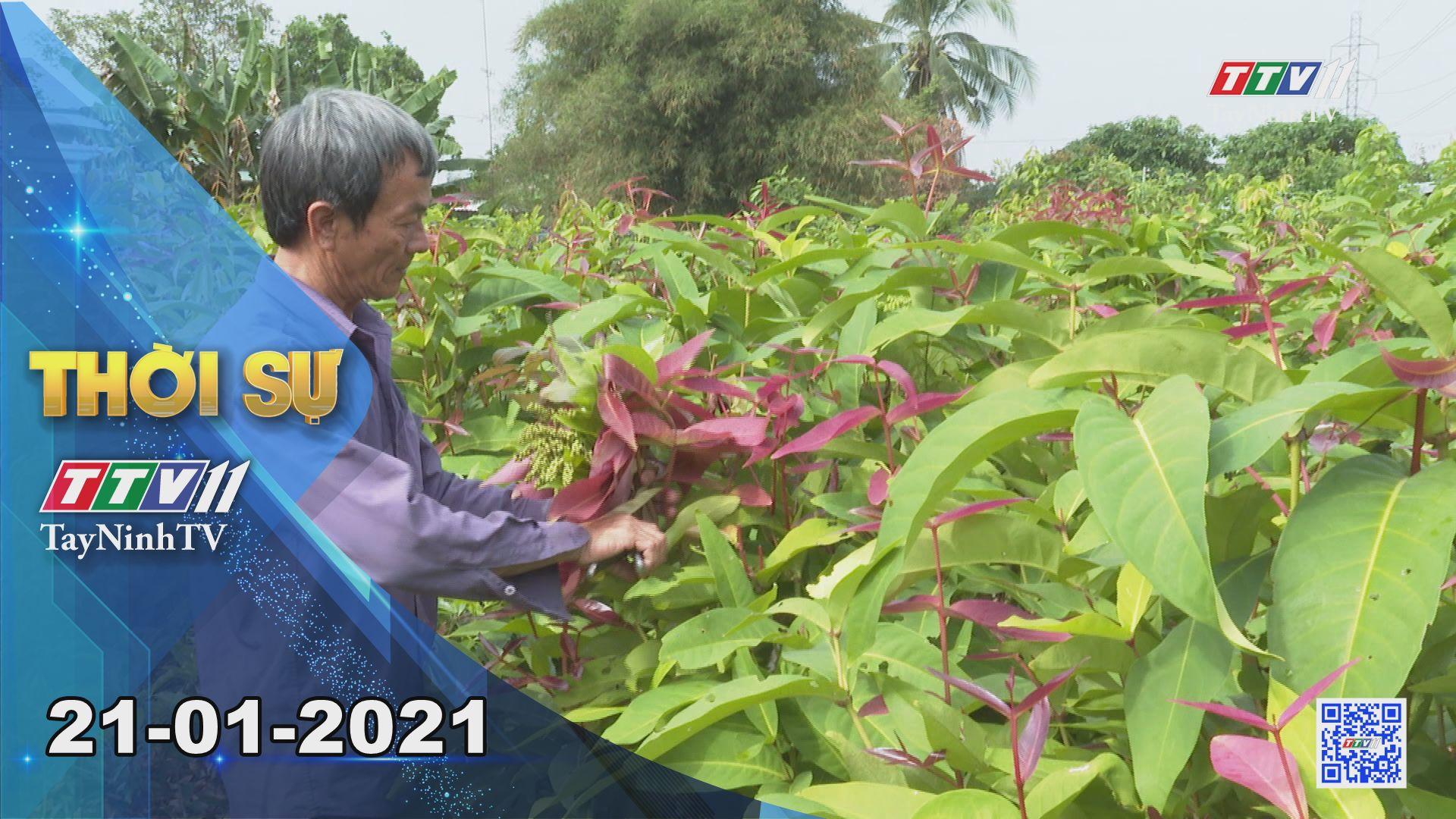 Thời sự Tây Ninh 21-01-2021 | Tin tức hôm nay | TayNinhTV