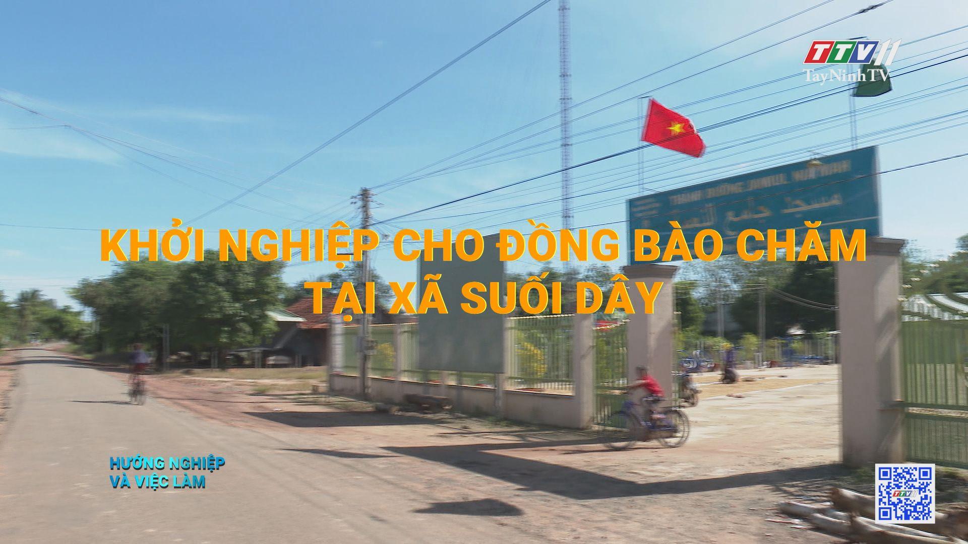 Khởi nghiệp cho đồng bào Chăm tại xã Suối Dây | HƯỚNG NGHIỆP VIỆC LÀM | TayNinhTV