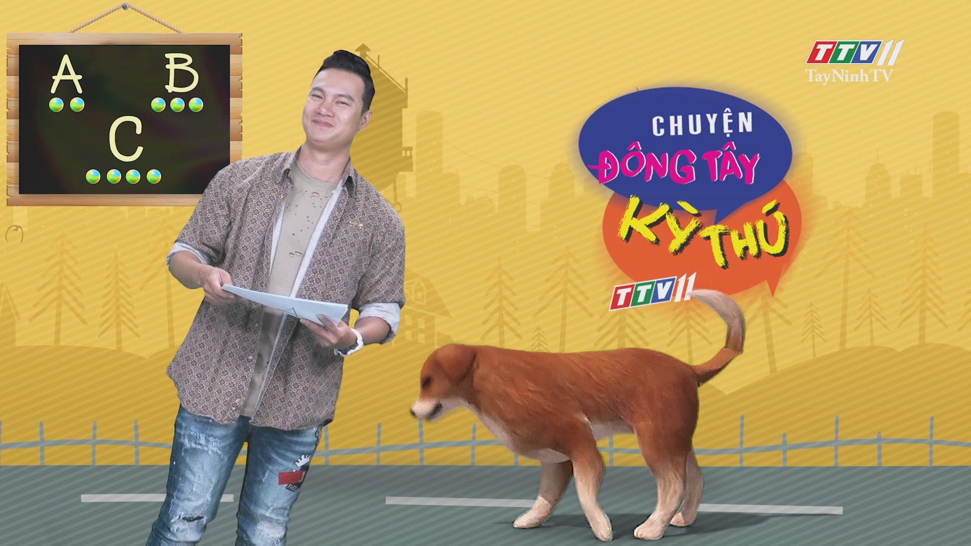 Chuyện Đông Tây Kỳ Thú 23-7-2020 | TayNinhTV