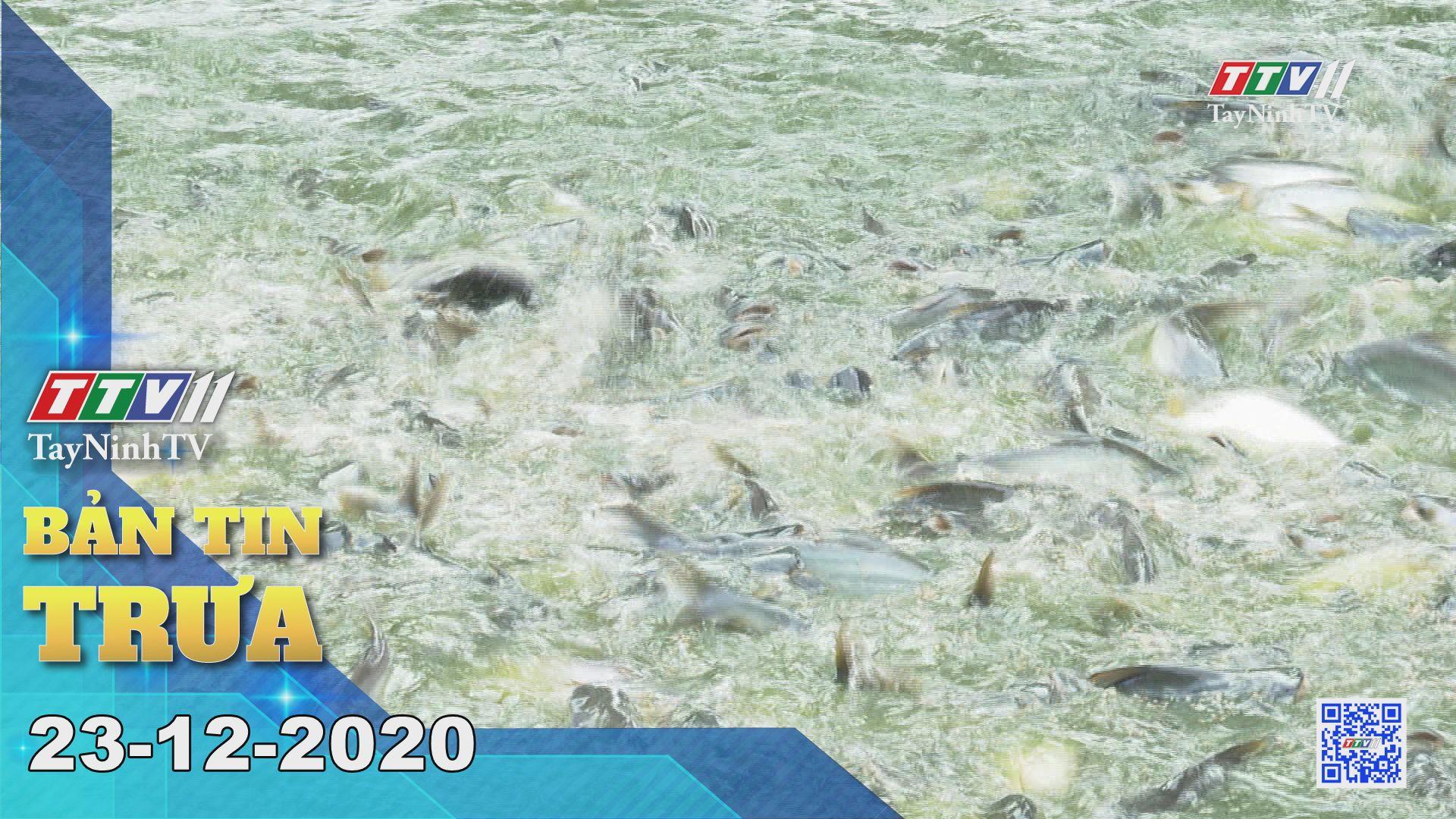 Bản tin trưa 23-12-2020 | Tin tức hôm nay | TayNinhTV
