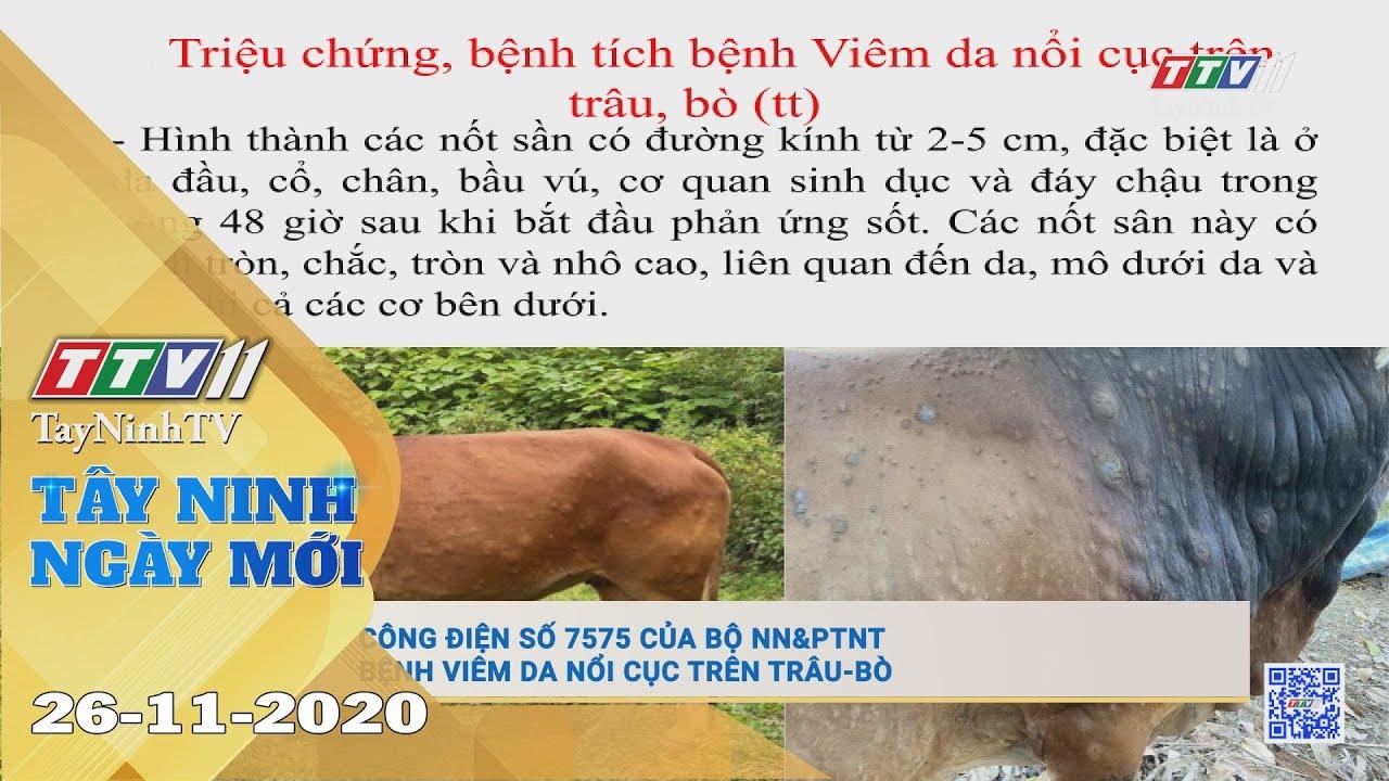 Tây Ninh Ngày Mới 26-11-2020 | Tin tức hôm nay | TayNinhTV