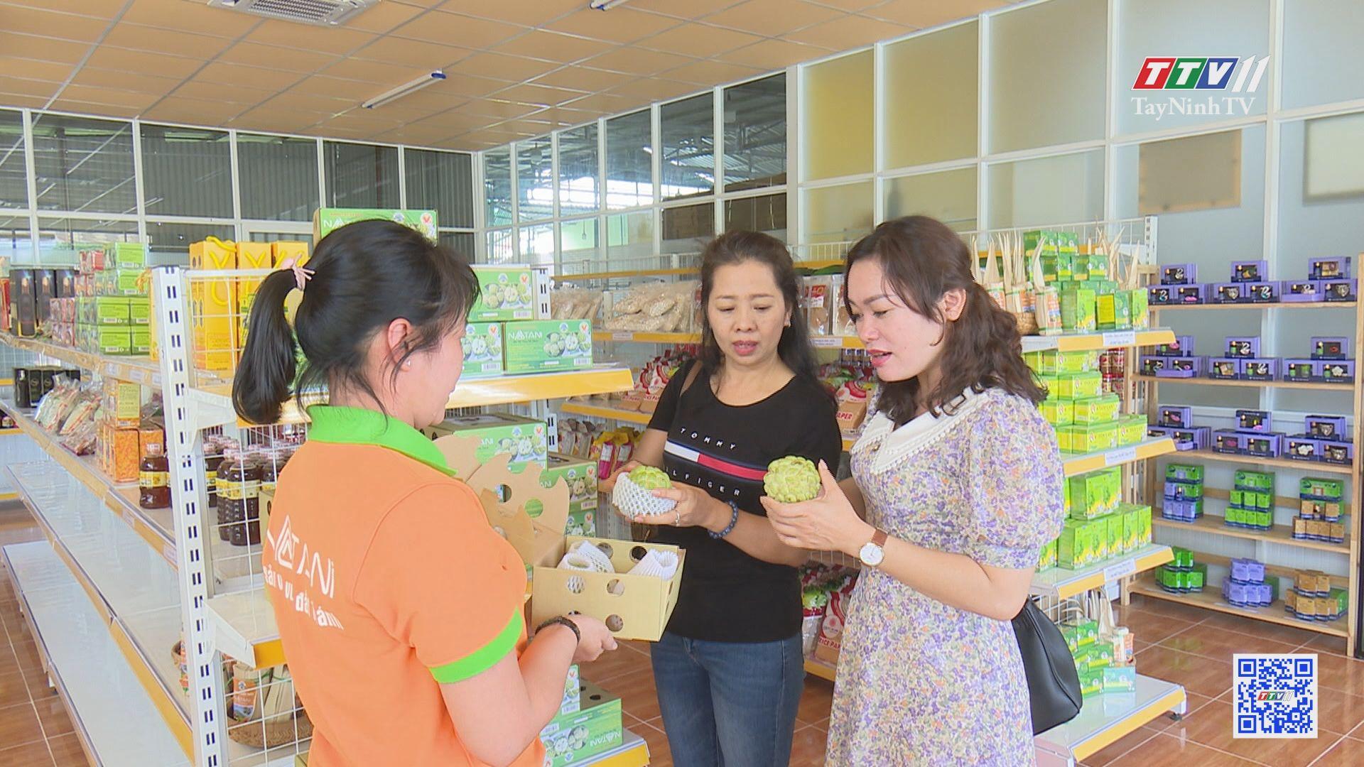 Người xây dựng thương hiệu cho trái mãng cầu Bà Đen | DẤU ẤN CUỘC ĐỜI | TayNinhTV