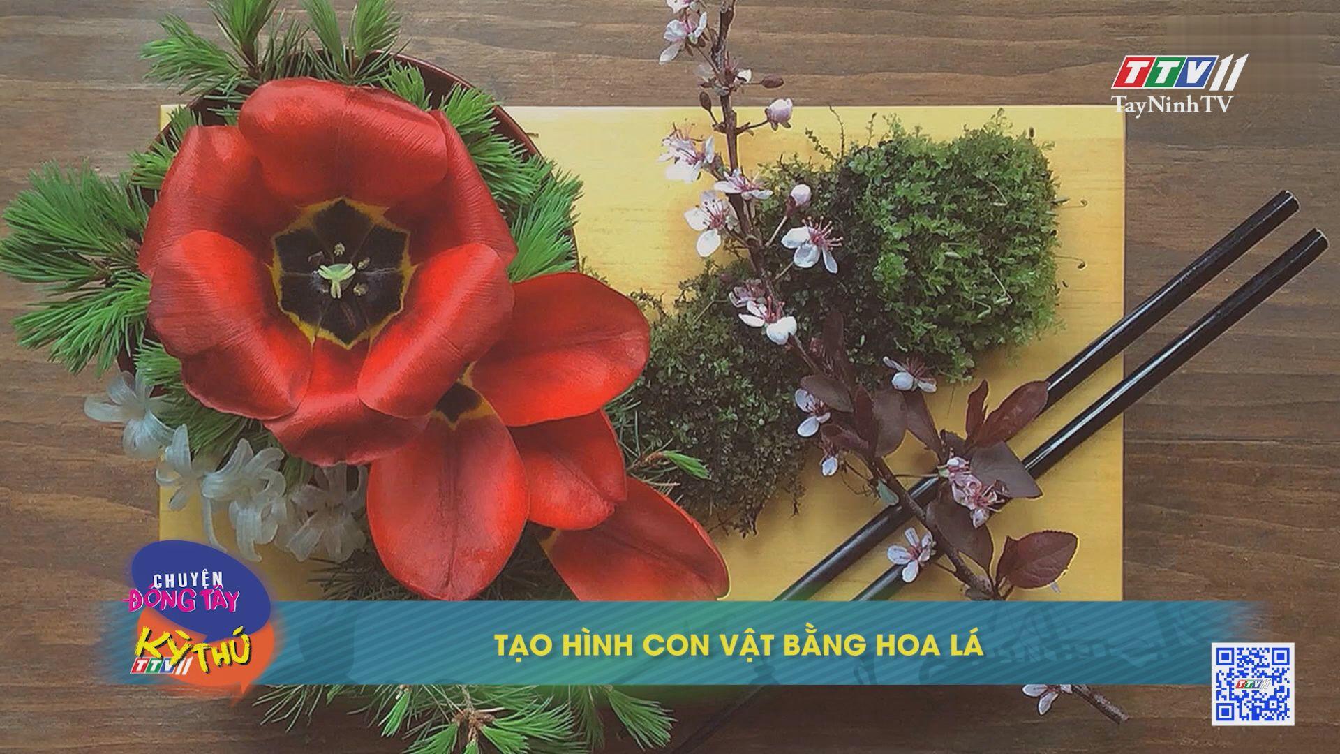 Tạo hình con vật bằng hoa lá | Chuyện Đông Tây Kỳ Thú | TayNinhTVE