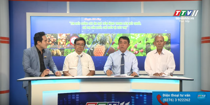 Chuyện Nhà Nông | Tìm hiểu giống cây ăn quả tìm năng trông liên kết chuỗi