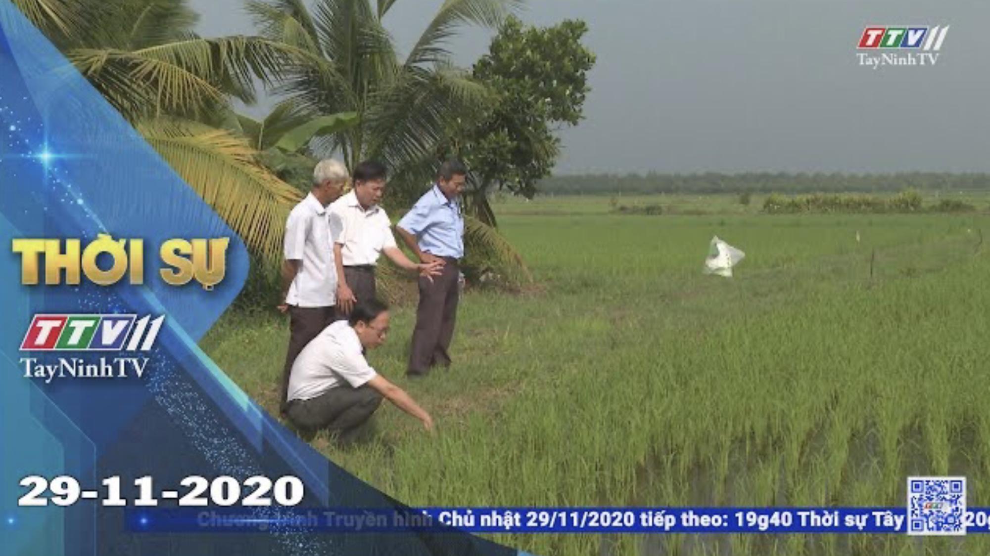 Thời sự Tây Ninh 29-11-2020 | Tin tức hôm nay | TayNinhTV