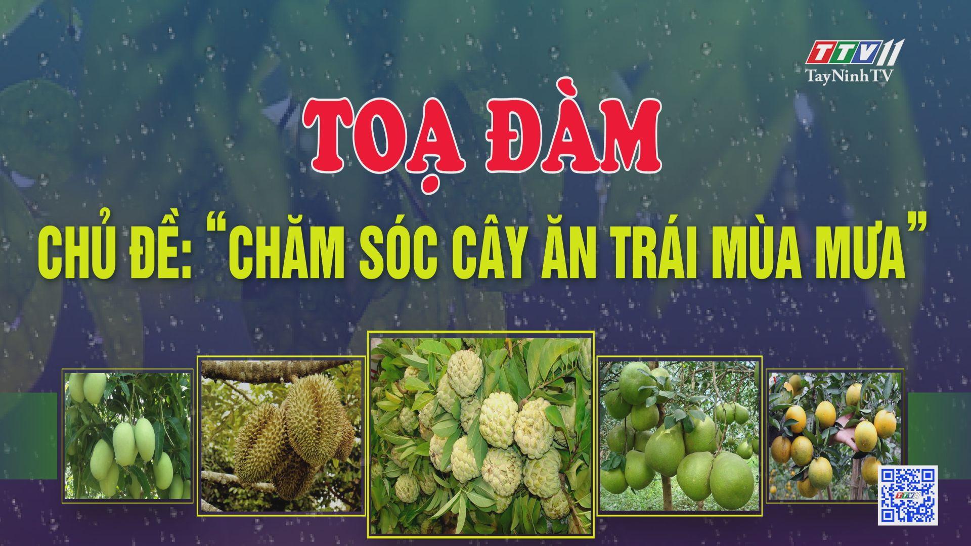 TRỰC TIẾP-Tọa đàm: Chăm sóc cây ăn trái trong điều kiện mùa mưa | CHUYỆN NHÀ NÔNG | TayNinhTV