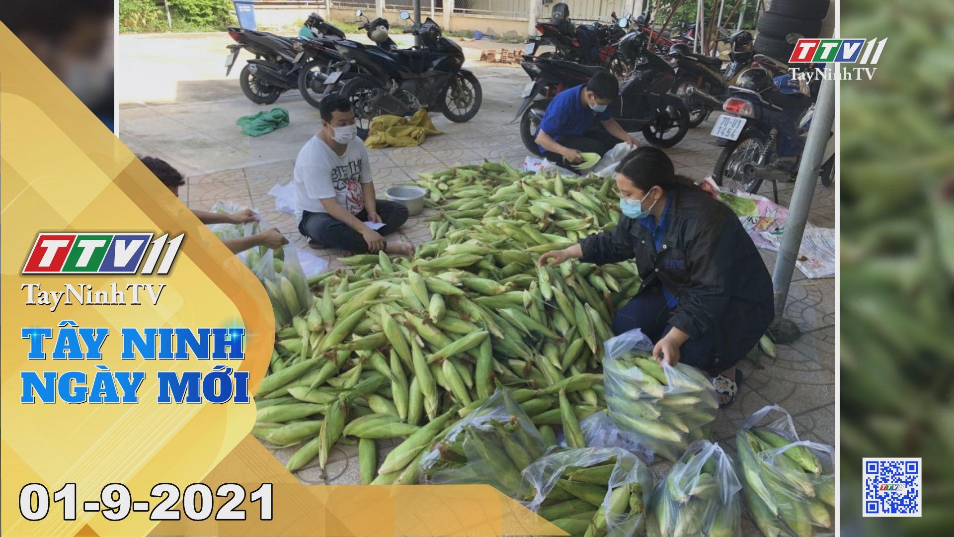 Tây Ninh Ngày Mới 01-9-2021 | Tin tức hôm nay | TayNinhTV